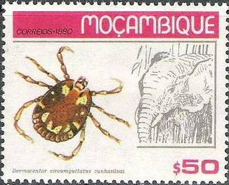 Mozambique 1980 Ticks from Mozambique
