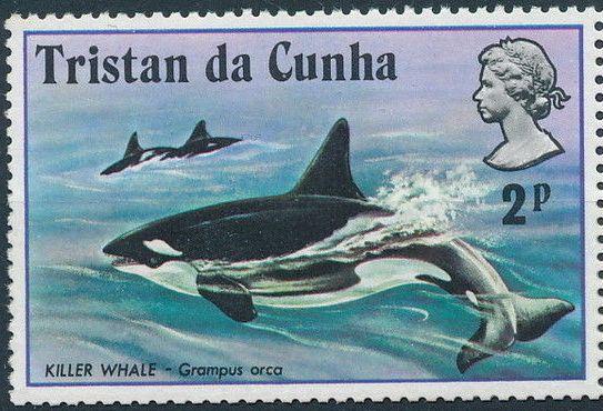 Tristan da Cunha 1975 Whales a.jpg