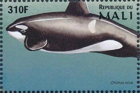 Mali 1997 Marine Life zf.jpg