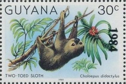 Guyana 1984 Wildlife (Overprinted 1984) d.jpg