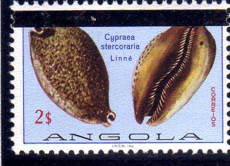Angola 1981 Sea Shells Overprinted c.jpg
