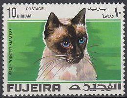 Fujeira 1967 Cats