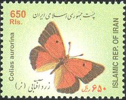 Iran 2004 Butterflies