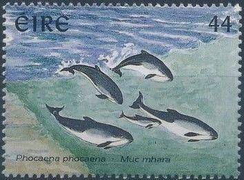 Ireland 1997 Marine Mammals c.jpg
