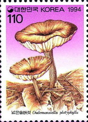 Korea (South) 1994 Mushrooms (2nd Issue)