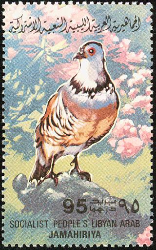 Libya 1982 Birds m.jpg