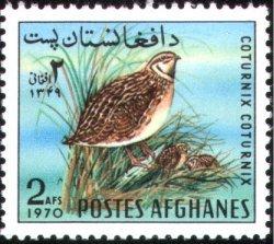 Afghanistan 1970 Wild Birds