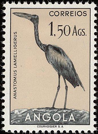 Angola 1951 Birds from Angola g.jpg