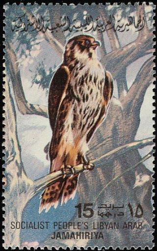 Libya 1982 Birds c.jpg