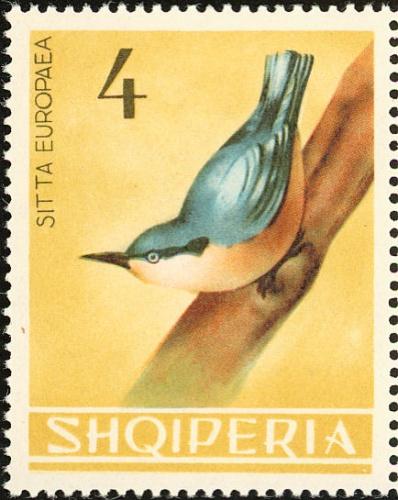 Albania 1964 Birds f.jpg