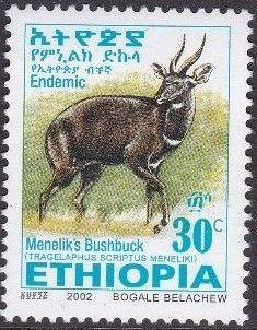 Ethiopia 2002 Menelik's Bushbuck f.jpg