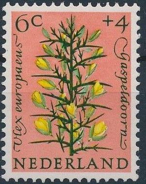 Netherlands 1960 Surtax for Child Welfare - Flowers b.jpg