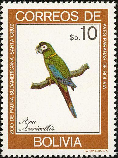 Bolivia 1981 Macaws e.jpg
