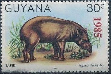 Guyana 1985 Wildlife (Overprinted 1985) e.jpg