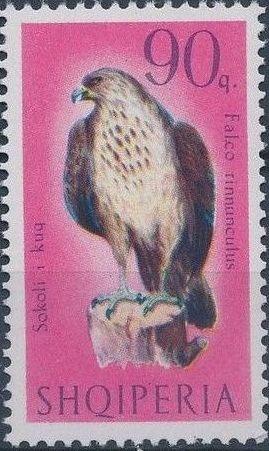 Albania 1966 Birds of Prey h.jpg