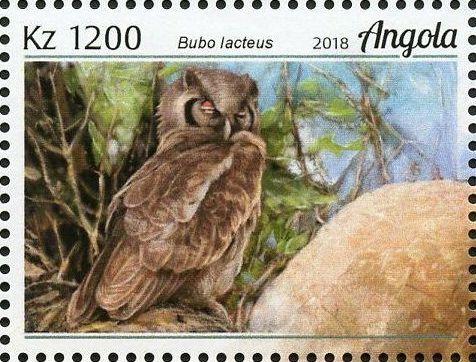 Angola 2018 Wildlife of Angola - Owls e.jpg