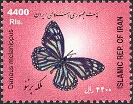 Iran 2005 Butterflies b.jpg