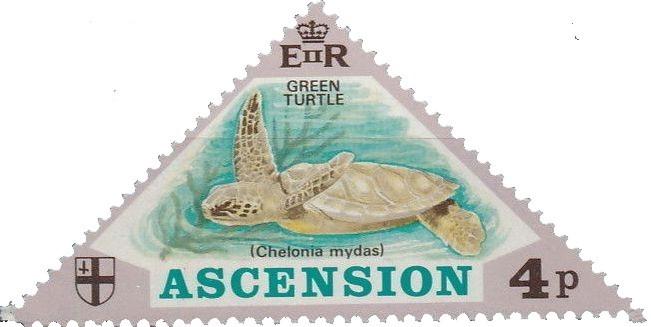 Ascension 1973 Turtles