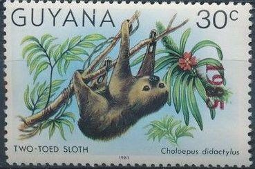 Guyana 1985 Wildlife (Overprinted 1985) d.jpg