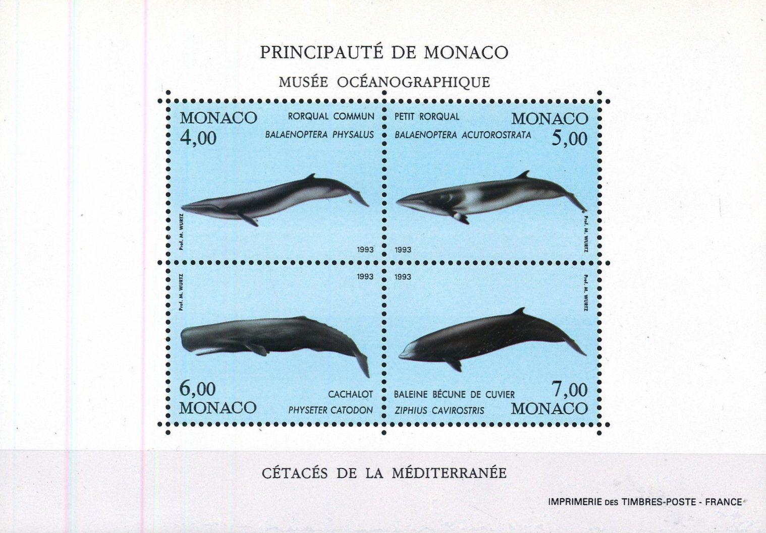 Monaco 1993 Musée Océanographique - Cétacés de la Méditerranée (2nd Group) h.jpg