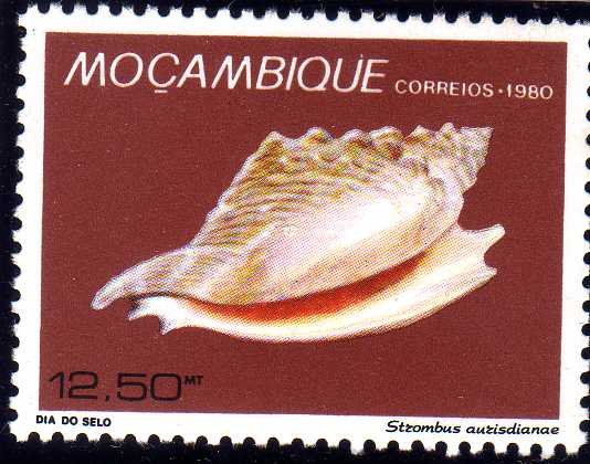 Mozambique 1980 Stamp Day - Maritime Shells of Mozambique d.jpg