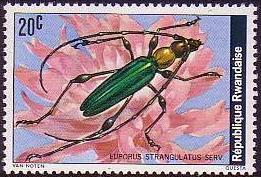 Rwanda 1978 Beetles