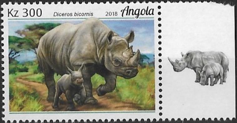Angola 2018 Wildlife of Angola - Rhinos d.jpg