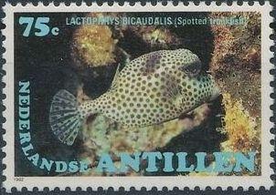 Netherlands Antilles 1982 Fishes b.jpg