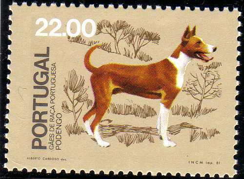 Portugal 1981 50th anniversary of the Portuguese Kennel Club d.jpg