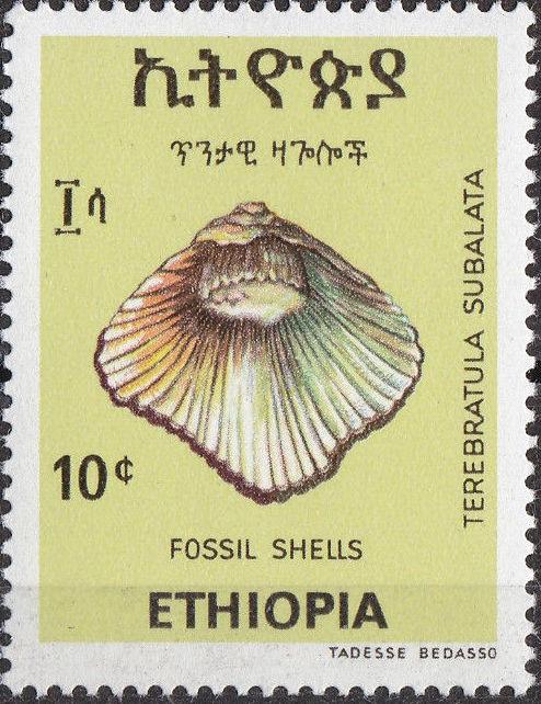 Ethiopia 1977 Fossil Shells b.jpg