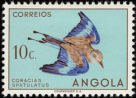 Angola 1951 Birds from Angola b.jpg