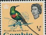 Gambia 1963 Birds