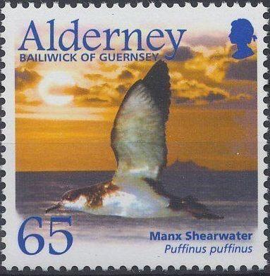 Alderney 2003 Migrating Birds Part 2 Seabirds f.jpg