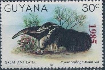Guyana 1985 Wildlife (Overprinted 1985) i.jpg
