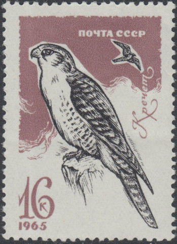 Soviet Union (USSR) 1965 Birds (3rd Group) b.jpg