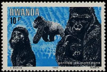Rwanda 1983 Mountain Gorilla d.jpg