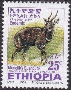 Ethiopia 2002 Menelik's Bushbuck e.jpg