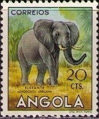 Angola 1953 Animals from Angola e.jpg