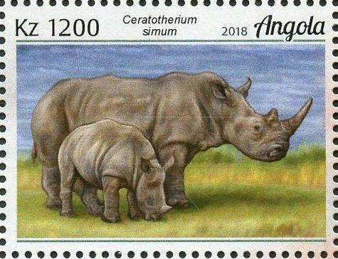 Angola 2018 Wildlife of Angola - Rhinos e.jpg