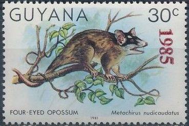 Guyana 1985 Wildlife (Overprinted 1985) k.jpg