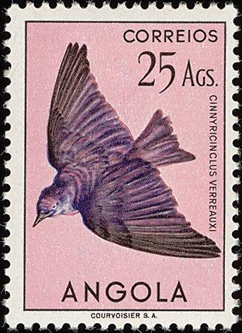 Angola 1951 Birds from Angola u.jpg
