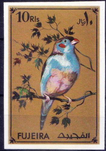 Fujeira 1971 Tropical Birds m.jpg