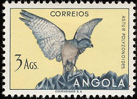 Angola 1951 Birds from Angola j.jpg