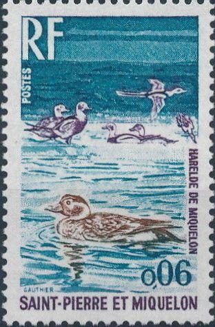 St Pierre et Miquelon 1973 Birds