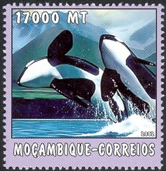 Mozambique 2002 The World of the Sea - Whales 1 c.jpg