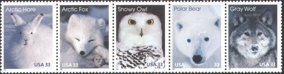 United States of America 1999 Arctic Animals STa.jpg