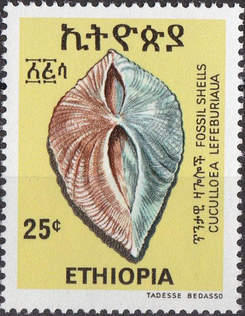 Ethiopia 1977 Fossil Shells c.jpg