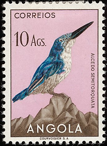 Angola 1951 Birds from Angola q.jpg