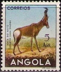 Angola 1953 Animals from Angola o.jpg