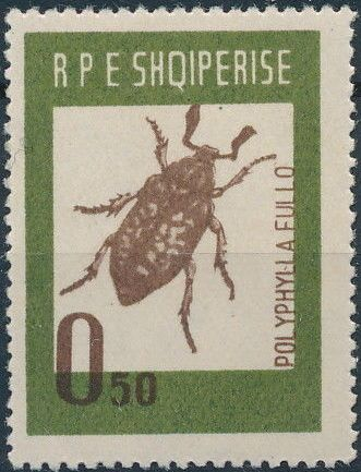 Albania 1963 Insects - Beetles